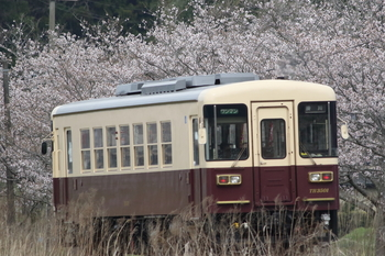 170409-2.JPG